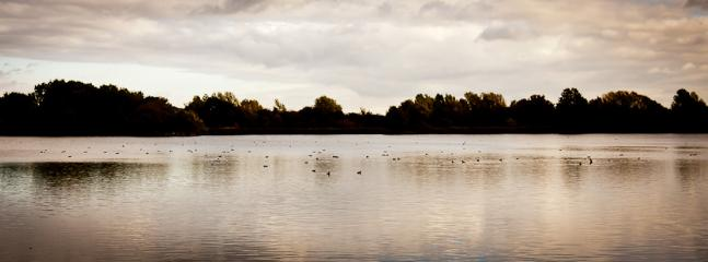 One of the Nearby Lakes