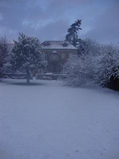 Back garden in the snow