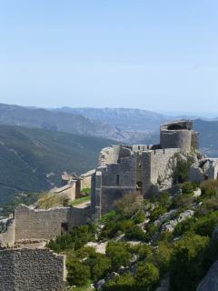 Peyrepertuse Castle 40 mins