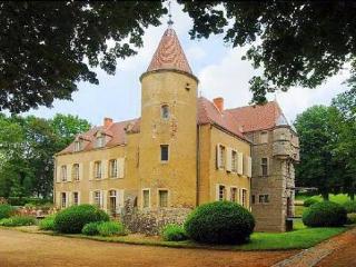 Chateau Aubepine, Lyon