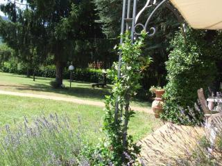 Tuscany holiday villa rental offers private pool and beautiful garden, near the town of Barga, sleeps 10