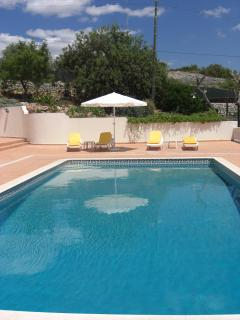 Fancy A Dip? - Pool, Patio and Side Garden to the East