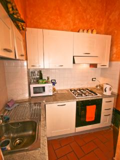 Modern kitchen with gas hob, electric oven, fridge and kitchen utensils and equipment