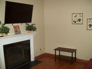 Oak Square, One Bedroom Condo in the Heart of Gatlinburg (Unit 315)
