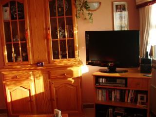 New LCD 32' Digital TV & IPod