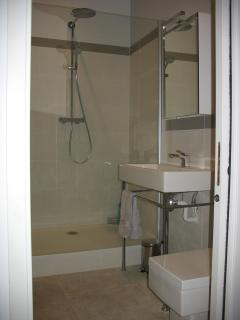 Bathroom with Duravit sink and toilet and walk in shower area