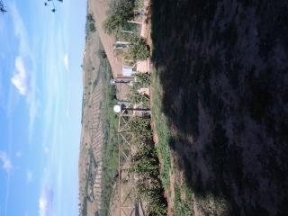 porzione di casale nella Maremma Toscana, Magliano in Toscana