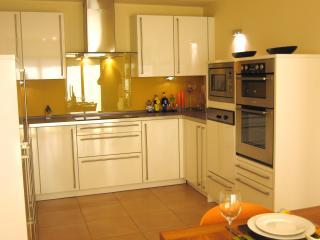 Cool modern designer Kitchen with Integrated Appliances