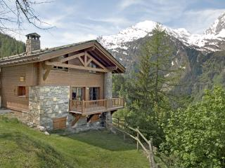 Spacious apartment in traditional private chalet