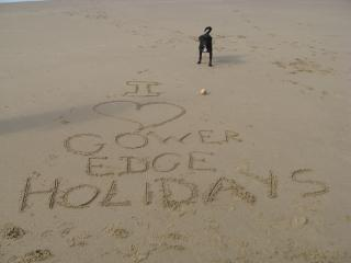 Multiple pets are very welcome free of charge at Gower Edge, and they seem to have a great time!