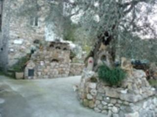 Casa tra gli ulivi, Olivetta San Michele