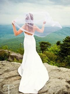 Mountain weddings along the Parkway in Spring, Summer and Fall. Let us help you plan yours!