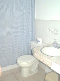 Second bathroom with shower/tub in kids room