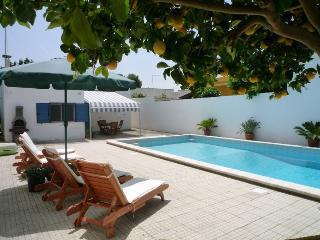 Private 10m x 5m swimming pool