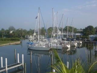 LOCATION, LOCATION...HARBORFRONT ON LEMON BAY, Placida
