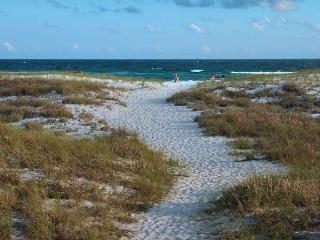 A Wave From It All - Grayton Beach, Fort Walton Beach