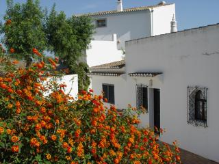 Casa Tingu