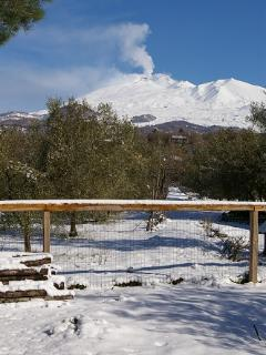 Etna In Winter