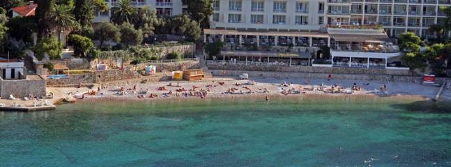 Beach Vis