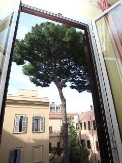 view from the first bedroom (one of two windows)