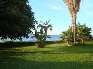 Jardines Del Mar, Torrox