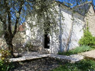Hillside cott in village with river views, garden, Bourre