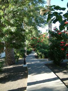 walkways of Las Brisas
