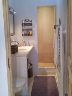 New bathroom with large walk-in shower