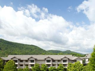 Mountain Getaway at 5 Star Resort, Pigeon Forge