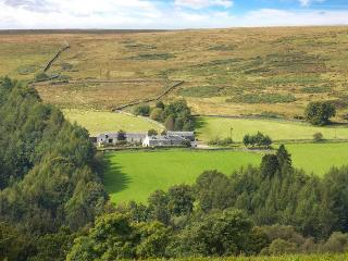 Middleholms - large stone farmhouse near Langholm