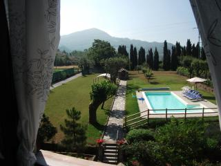 View of secure garden and pool from bedroom window