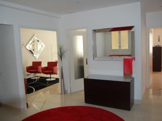 Stunning Luxury Apartment in Central Nice