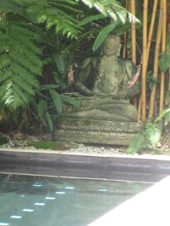 Huge lap pool area closely watched by our poolside Buddha. Sunbake or swim in gorgeous surroundings.