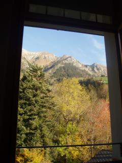 View from bedroom window - Autumn