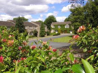 Dalegarth, Buckden