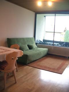 Living area in apartment 1