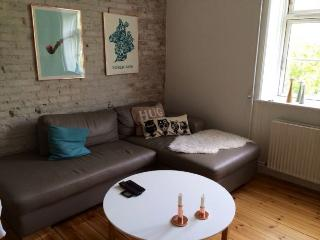 Fine Copenhagen apartment near Oesterfaelled square, Copenhague