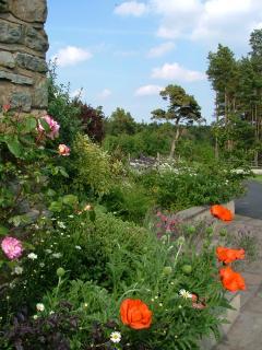 The gardens burst into colour come June..