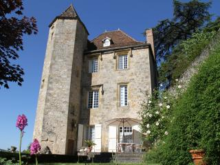 Renaissance Castle with private pool in the LOT, F, Puy-l'Eveque