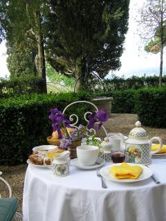 breakfast in the garden of the villa , may 2012