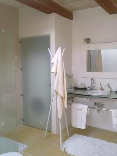 Shower room with hidden Washing Machine & Tumble Dryer