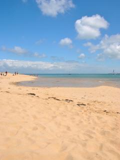 sandy beaches on Ile de Ré