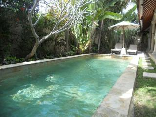 Ayu, 3 Bedroom Villa, Well Priced Family Accom. Umalas