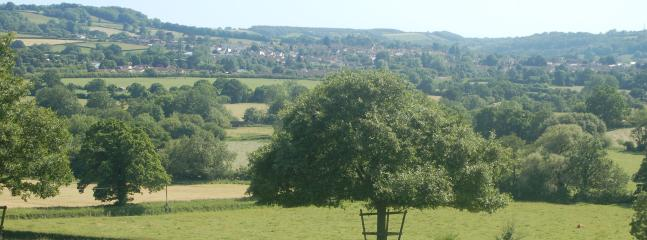 View of Honiton from Woodhayes Farm