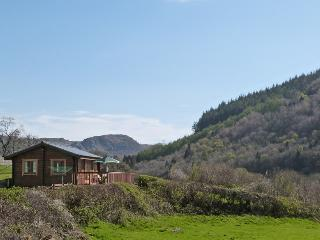 Caban Betws: Log Cabin near Betws y Coed - 49465