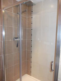 Shower.  Overhead and wall mounted shower.  Fits 2!