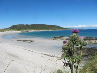 Highfield Cottage, Isle of Colonsay, Hebrides