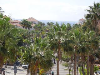 Sea view through the palm-trees
