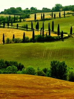 Val d'Orcia is 20 minutes far away