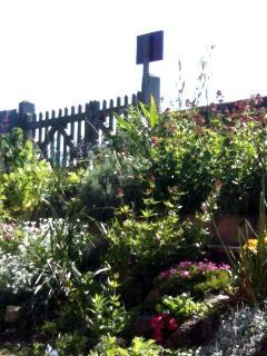 Amberley Cottage Garden